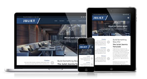 Juliet - Striking Design to Showcase your Business